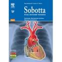 Sobotta. Атлас анатомии человека. Том 2. Туловище. Внутренние органы. Нижняя конечность.